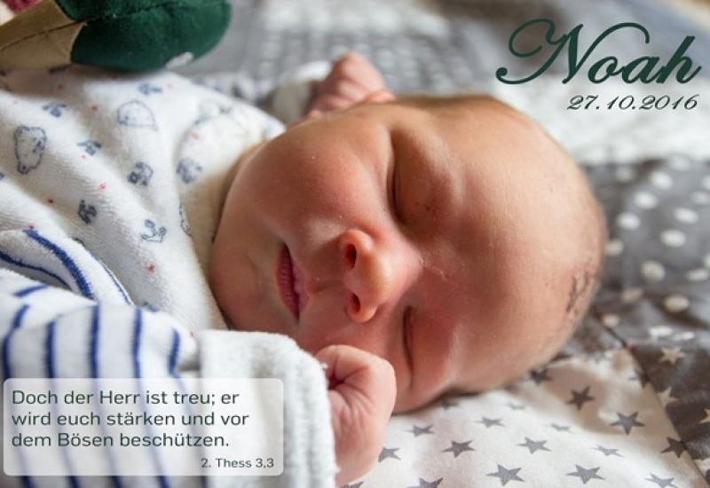 noah_meinig